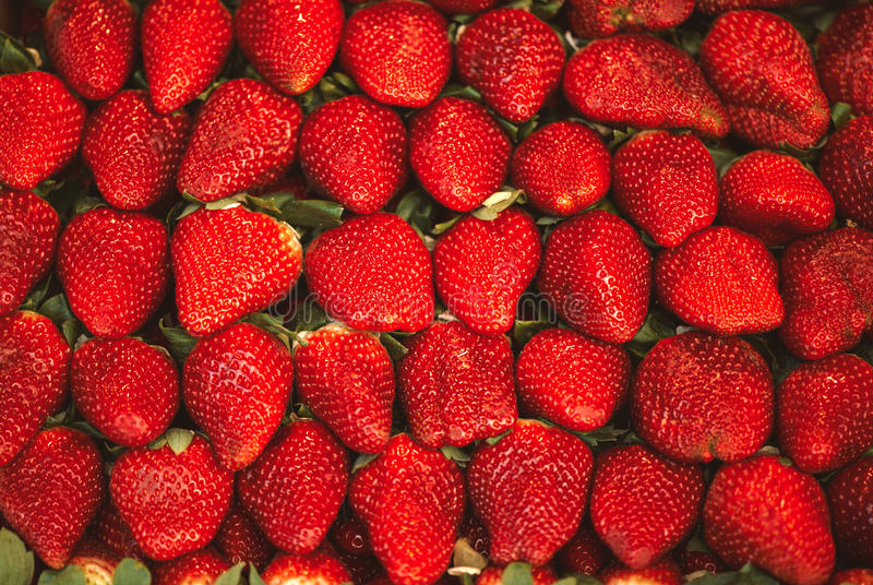 Macro photo of a lot of strawberries in full frame. stock photo