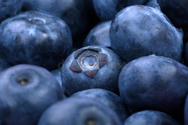 Macro photo of organic and sweet blueberries as a background. Healthful and fresh berries for desserts or smoothies. stock photography