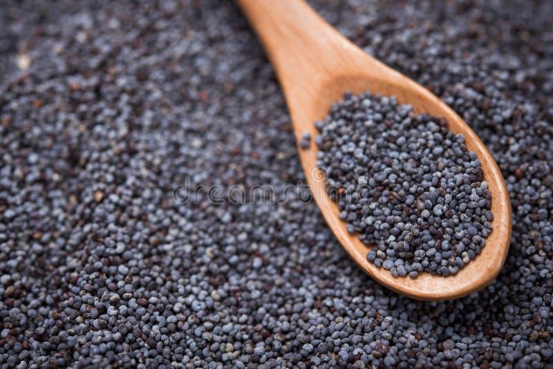 Macro photo of poppy seeds stock photography
