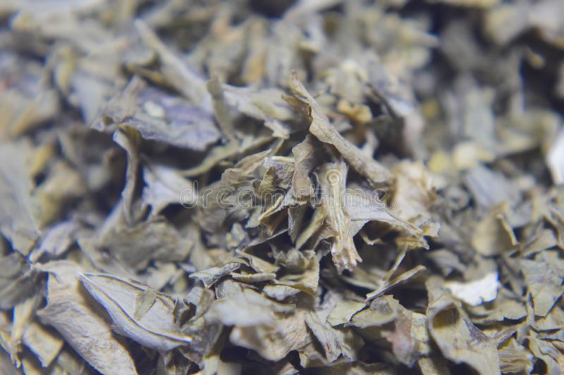 Dried parsley leaves. A macro photograph of dried parsley leaves stock photos