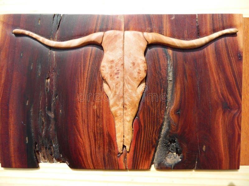 Macro Photograph of Steer Skull Inlay stock image