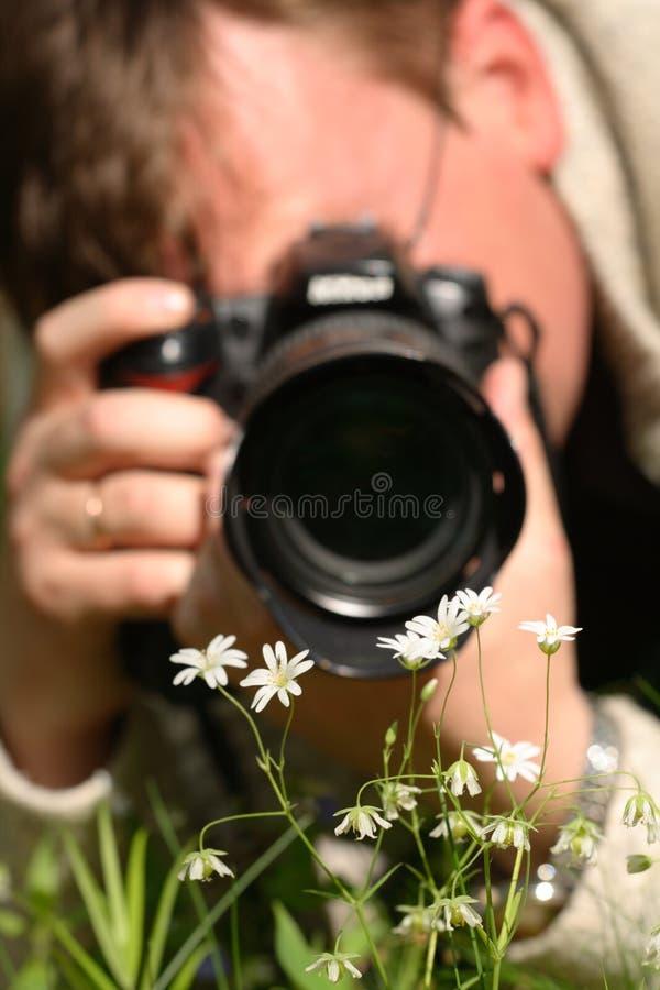 Macro photographer. While shooting flowers royalty free stock photo