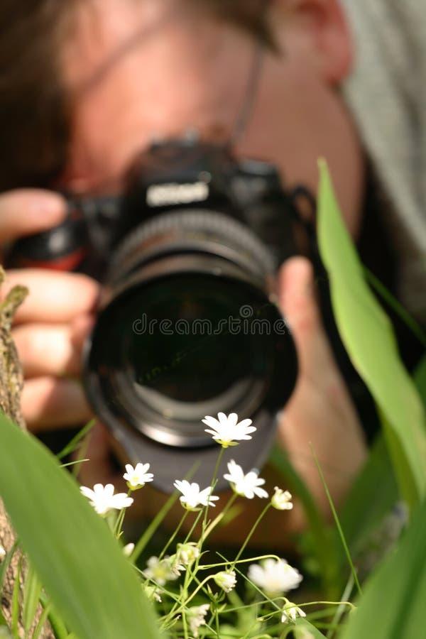 Macro photographer. While shooting flowers stock photo