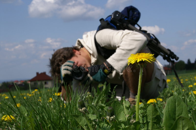 Macro-photographer royalty free stock images
