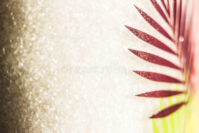 Macro-photographie du sucre dans un bocal avec un motif feuille illustration de vecteur