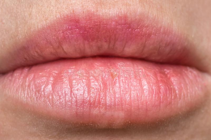 Macro photography of attractive human lips. With lipstick royalty free stock images