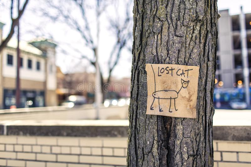 Macro Photography of Brown and Black Lost Cat Signage on Black Bare Tree stock images