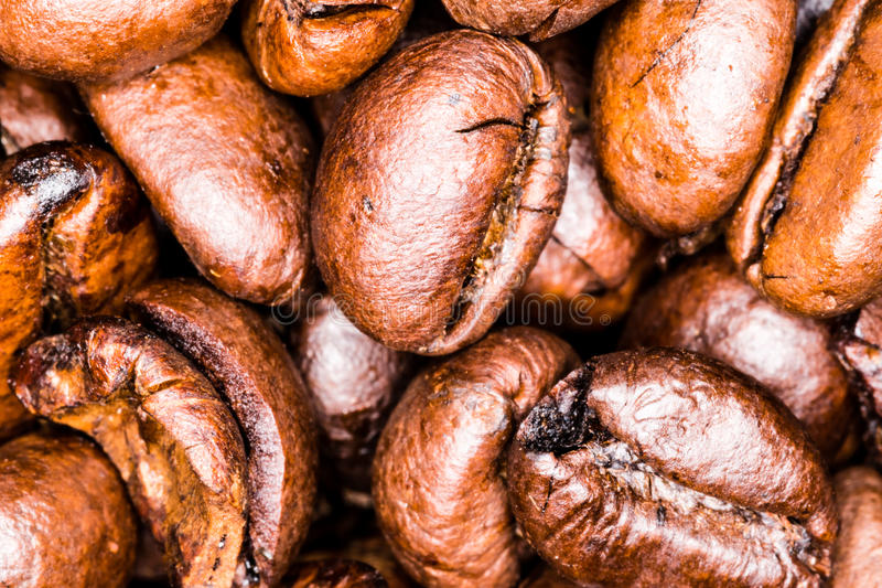 Macro photography of coffee beans royalty free stock images