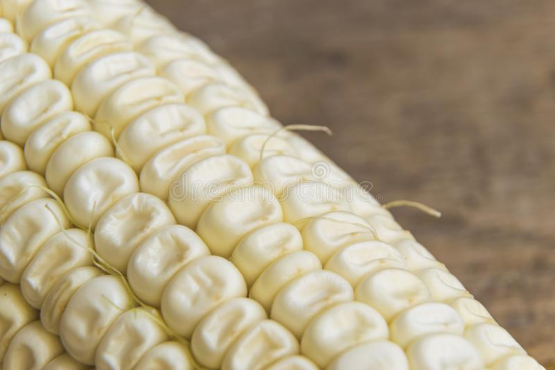 Macro photography of fresh and organic white corn.  royalty free stock photography