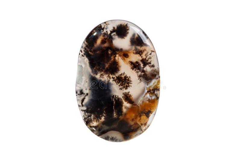 Macro pierre minérale Moss Agate, fond blanc muschiataan d'Agata photo libre de droits