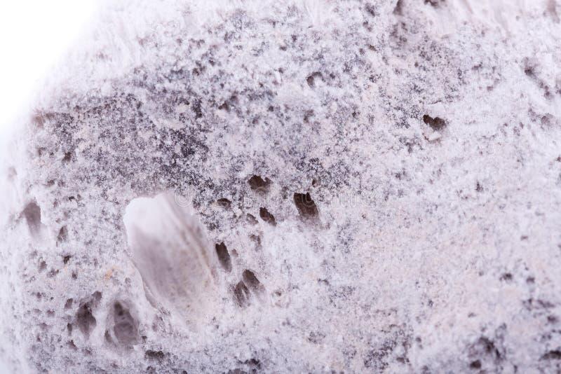 Macro pierre ponce en pierre minérale sur le fond blanc image libre de droits