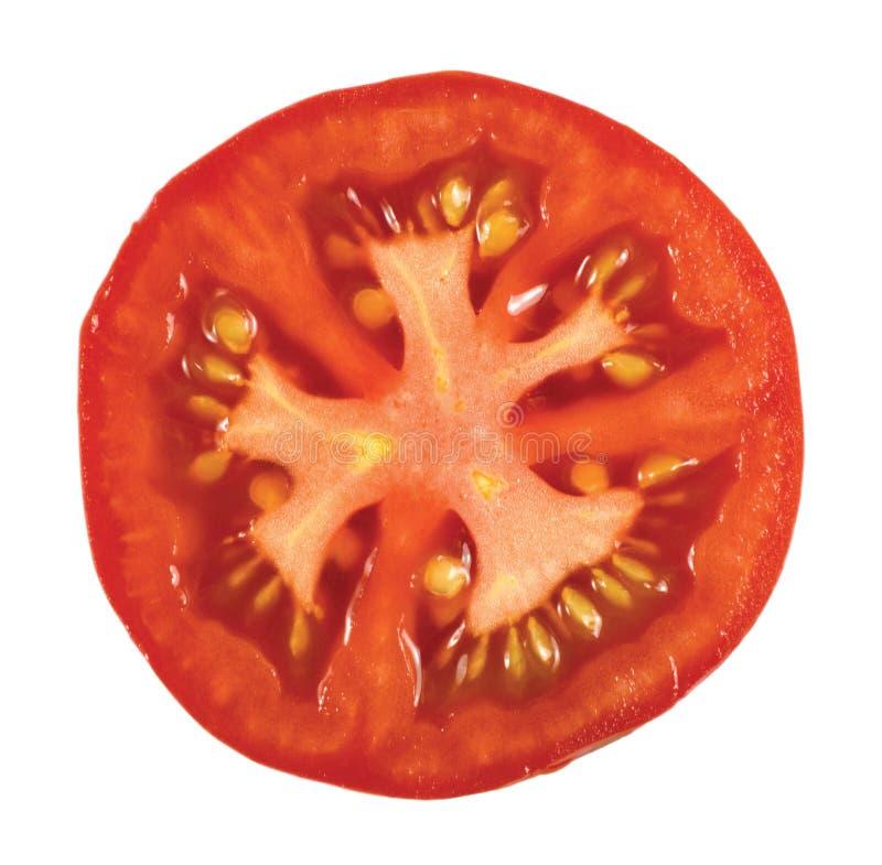Macro plan rapproché de Tomatoe d'isolement photos stock