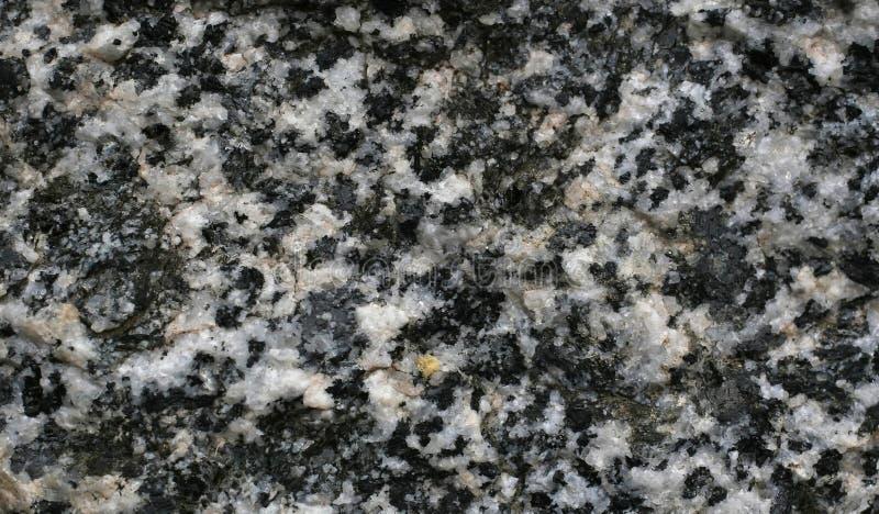 Macro preto e branco do granito fotos de stock