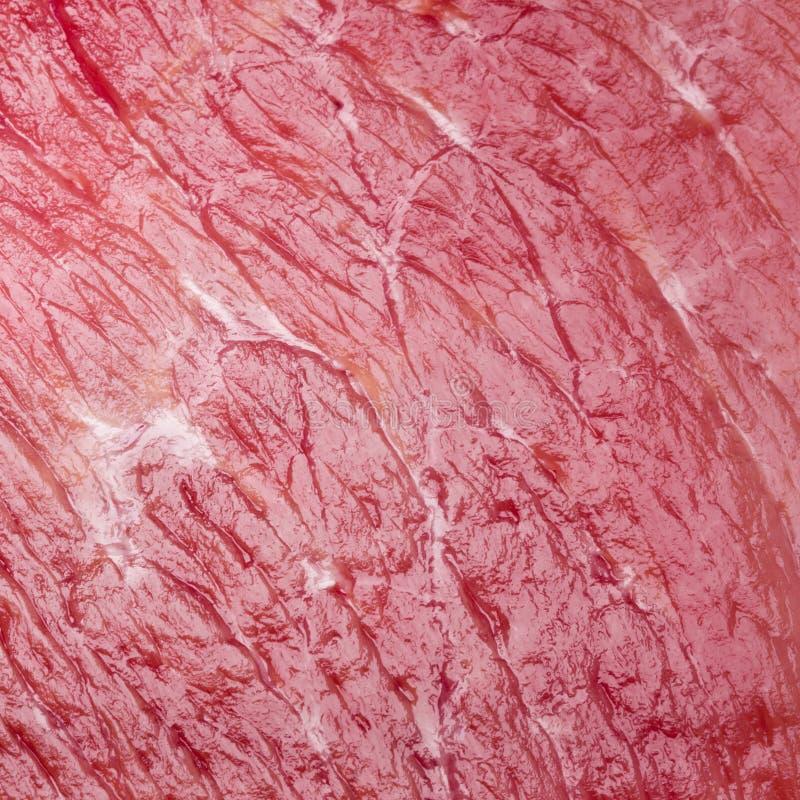 Macro projectile de fond de viande photo stock