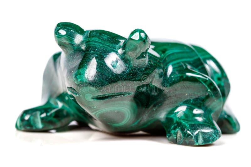 Macro rospo di pietra minerale da malachite immagine stock libera da diritti