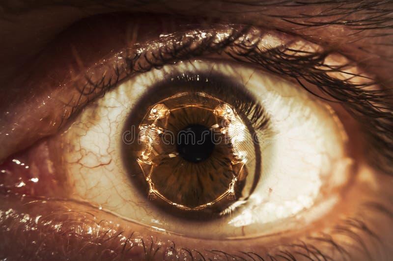 Macro scheletro del bulbo oculare immagini stock libere da diritti
