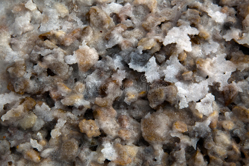 Download Salt of the Land stock photo. Image of nature, natural - 29997278
