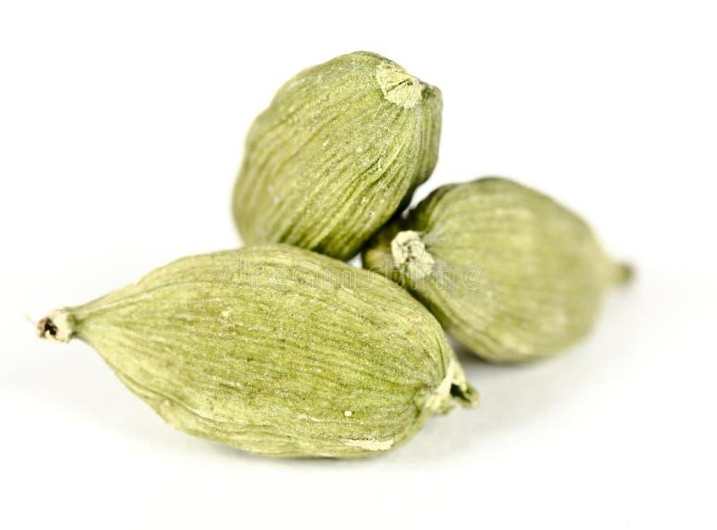A macro shot of green cardamom stock photos