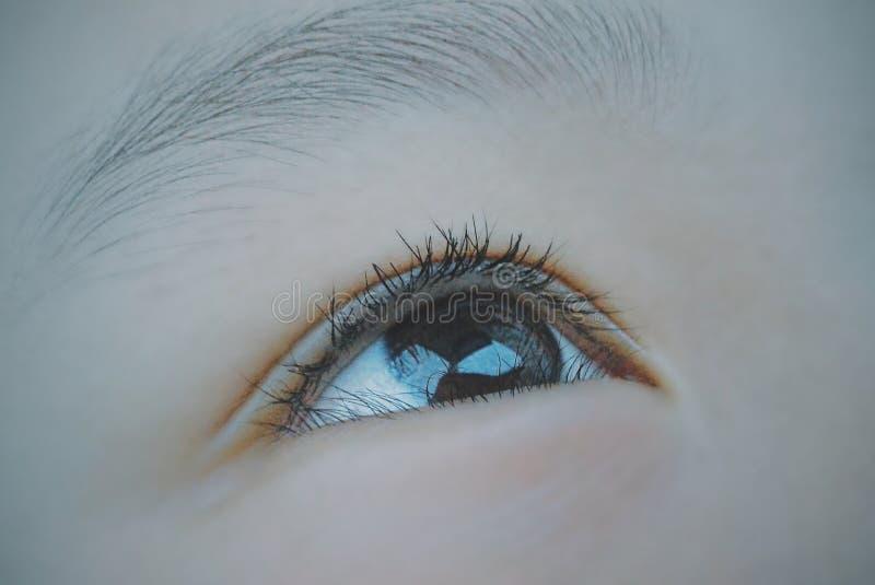 Macro Shot of Human Eye royalty free stock photos