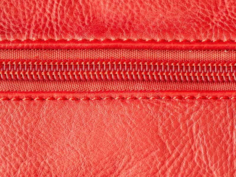 Macro shot of red zipper on leather texture background with stitching. Copyspace stock photos
