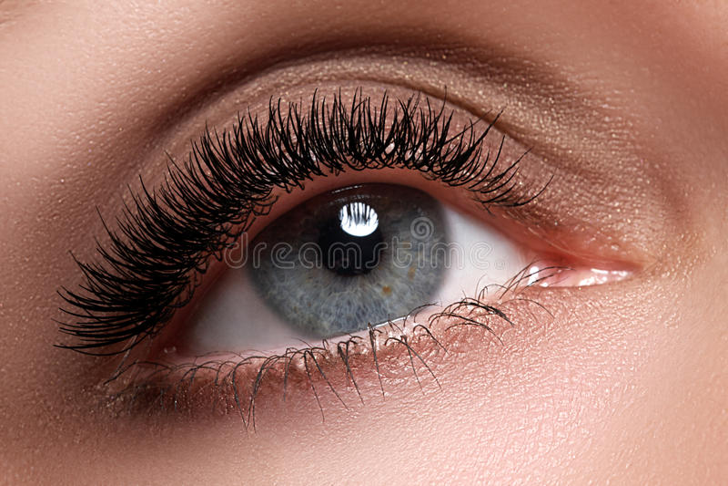 Macro shot of woman's beautiful eye with extremely long eyelashes. view, sensual look. Female eye with long eyelashes royalty free stock photography