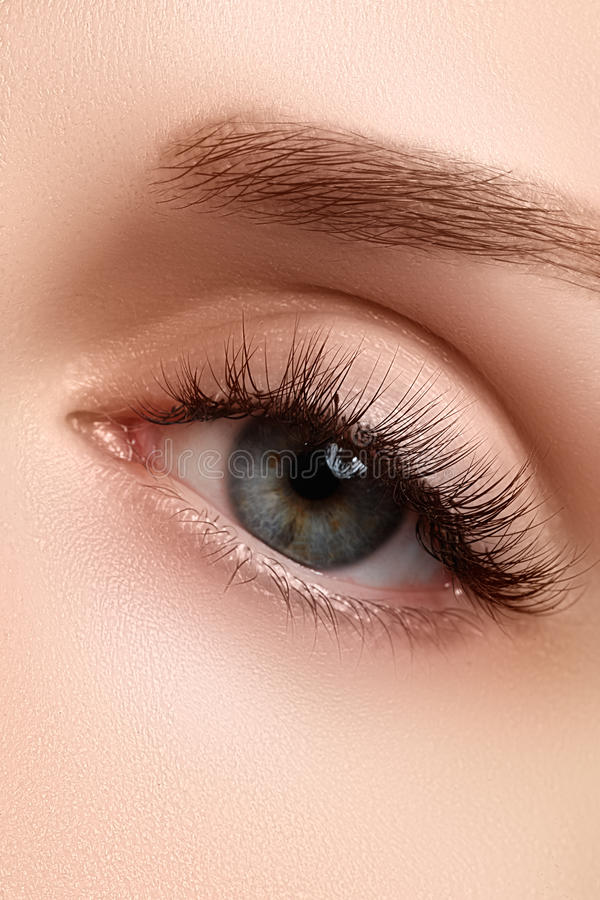 Macro shot of woman's beautiful eye with extremely long eyelashes. view, sensual look. Female eye with long eyelashes royalty free stock image