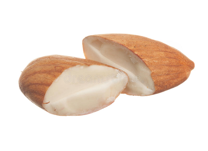 Macro of sliced hazelnut. Close shot of half a hazelnut isolated against white background stock images