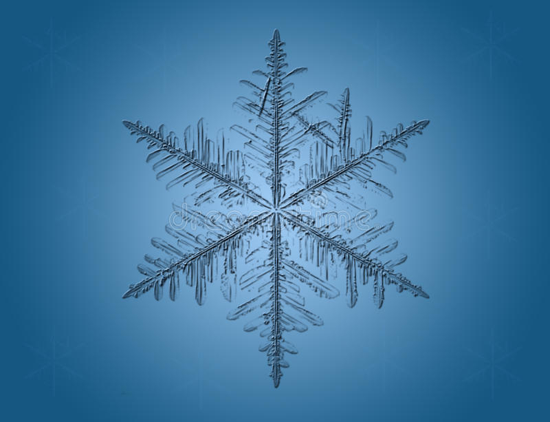 Macro snowflake on blue vector illustration