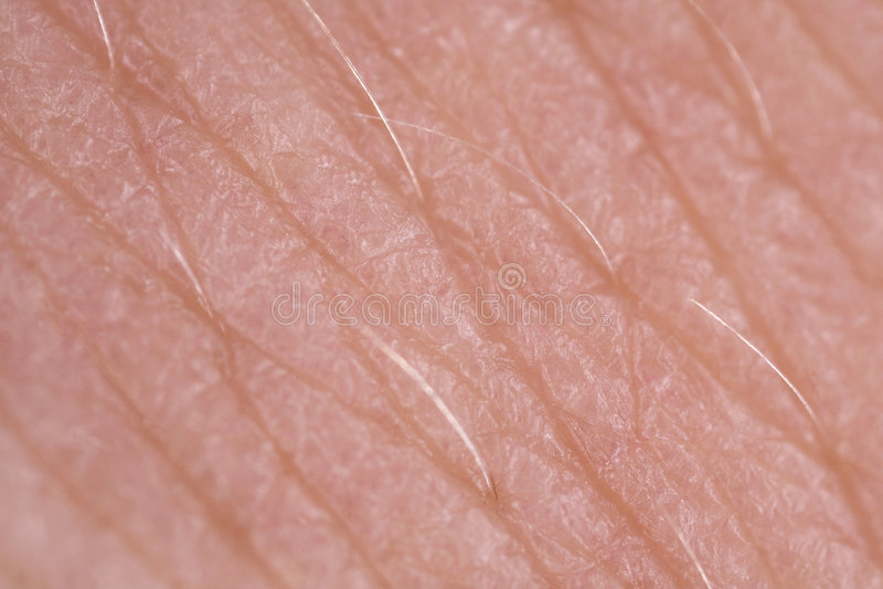 Macro super da textura da pele imagens de stock