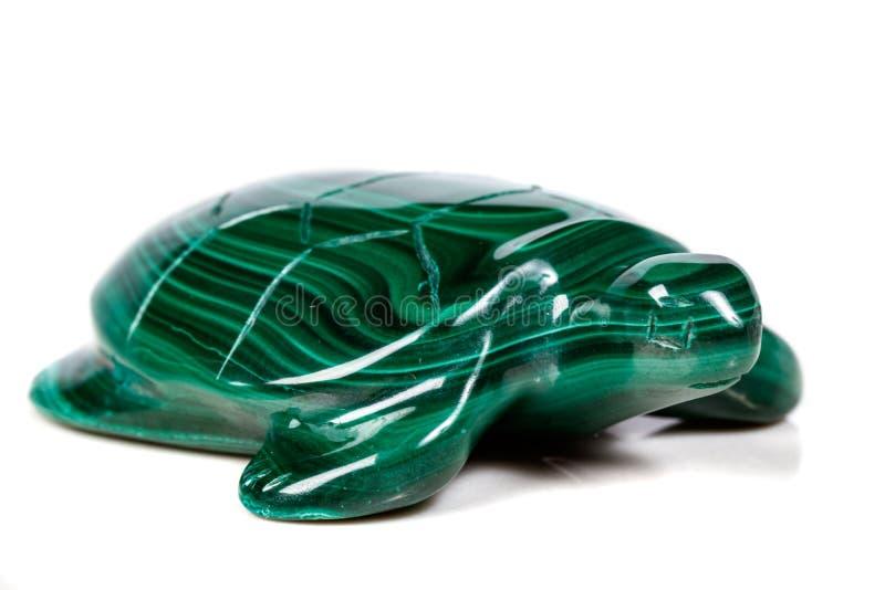 Macro tartaruga di pietra minerale da malachite immagine stock libera da diritti