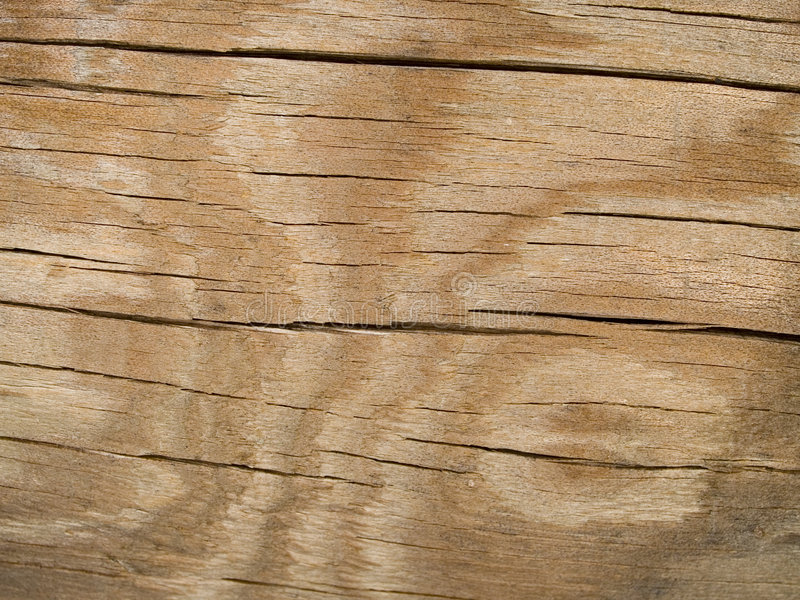 Macro texture - bois - fissurée avec la configuration photo stock