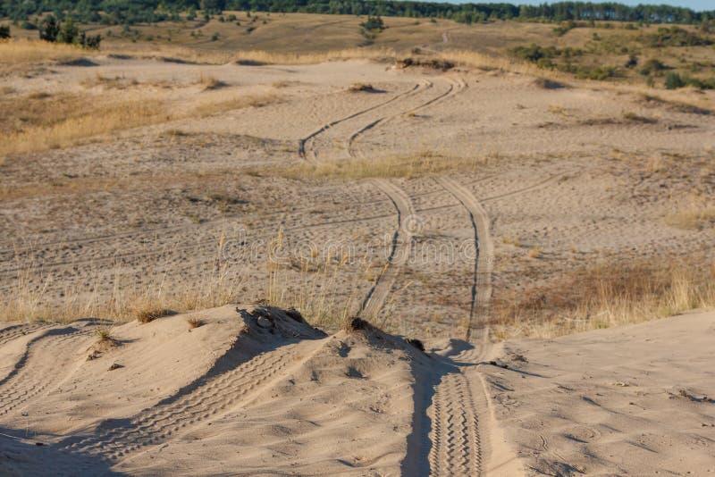 Macro texture tire tracks in the sand. In sunlight desert stock photos