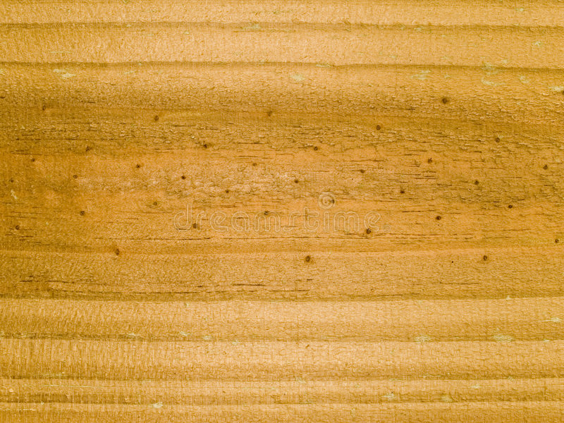 Macro texture - wood - grain stock image