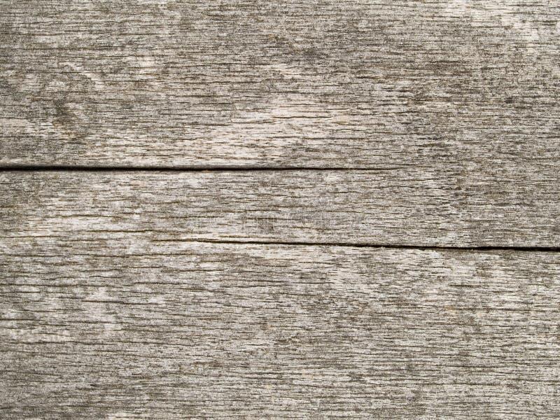 Macro textuur - hout - korrel royalty-vrije stock afbeelding