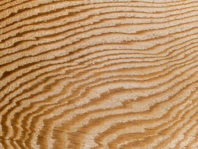 Macro textuur - hout - korrel stock foto