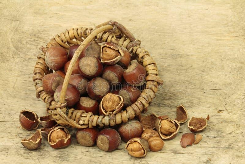 Macro van grote hazelnoten stock afbeeldingen