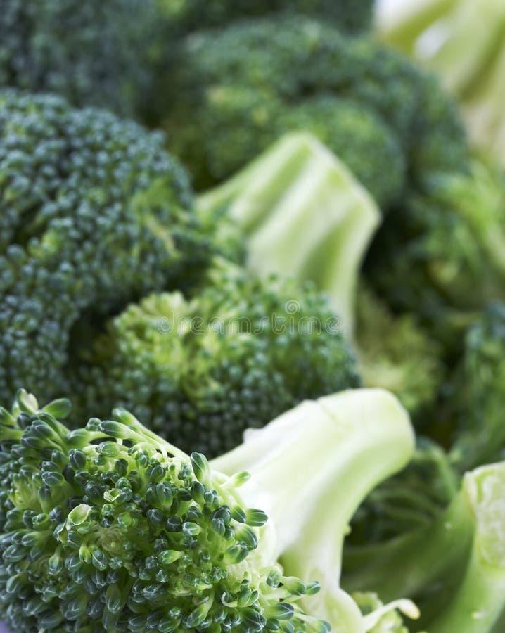Macro of vegetable stock photography