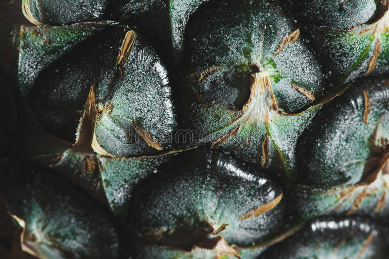 Macro view of pineapple. In dark royalty free stock photo