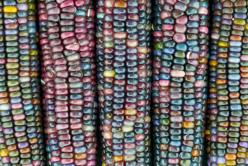 Macro vista delle orecchie di vetro della gemma fotografia stock