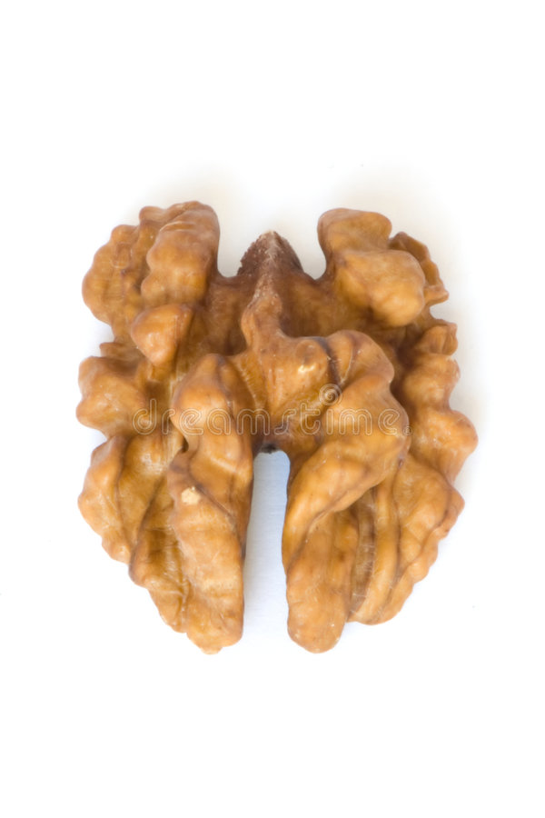Macro walnut royalty free stock photo