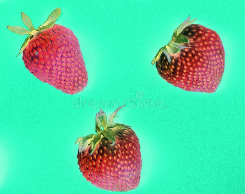Macro of yummy strawberries on green background royalty free stock photo