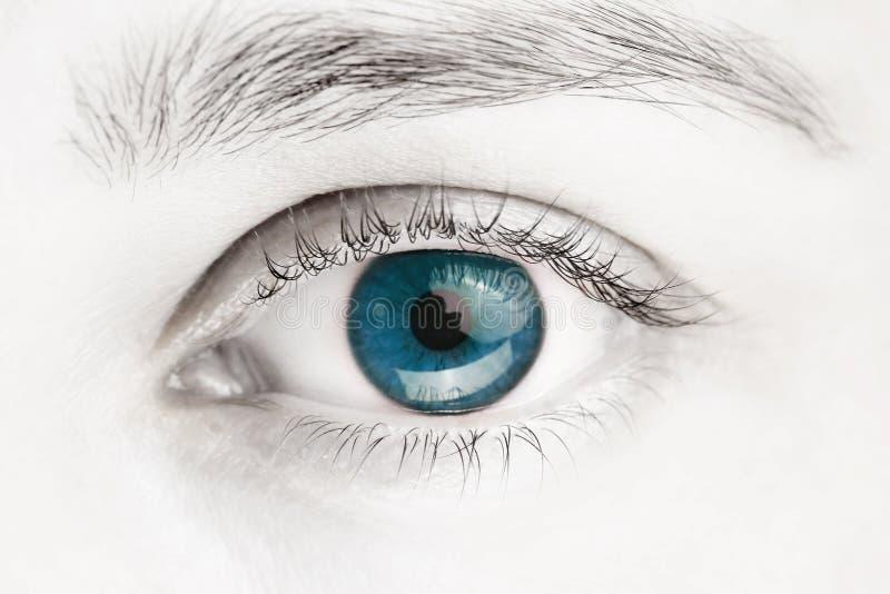 Macrobeeld van blauw oog stock afbeeldingen