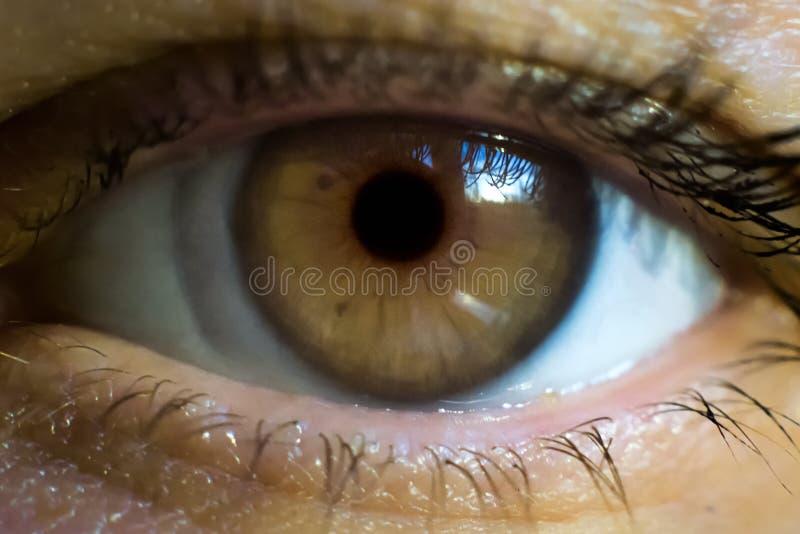 Macrobeeld van menselijk oog met contactlens royalty-vrije stock foto