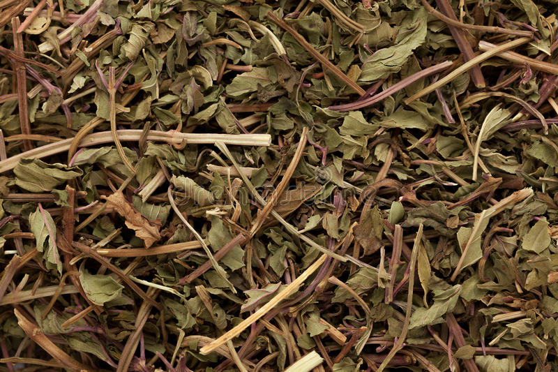 Macroclose-up van droge organische Pepermunt (Mentha-piperita) royalty-vrije stock afbeelding