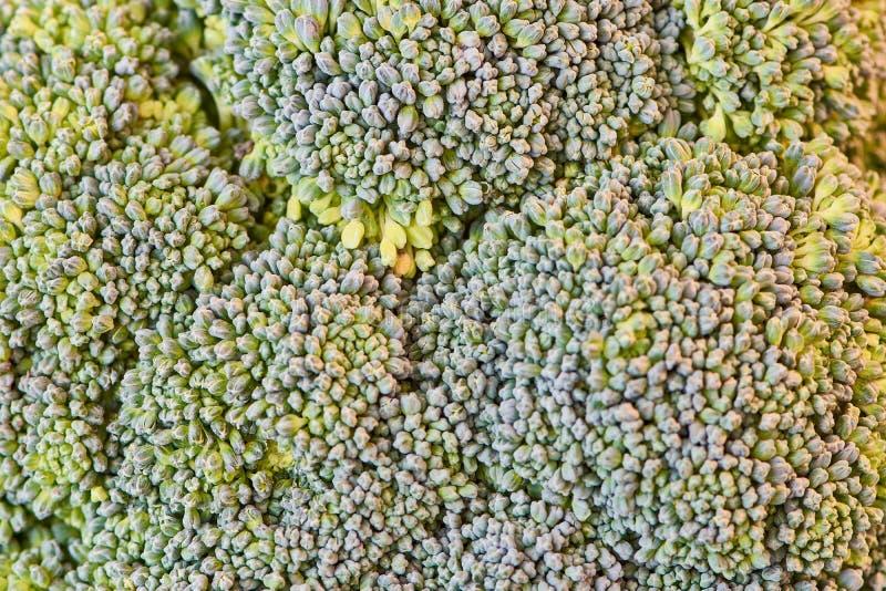 Macrofoto van broccoli als beeldachtergrond stock afbeeldingen
