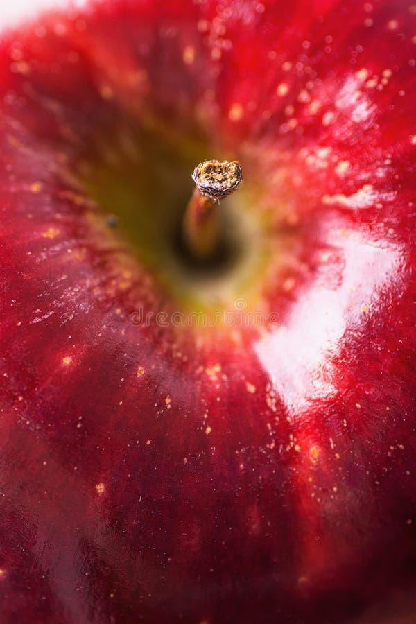 Macrofoto van Rijp Organisch Rood Apple met Textuuronvolmaaktheden Selectieve Nadruk op Stamuiteinde De achtergrond van het voeds stock foto's
