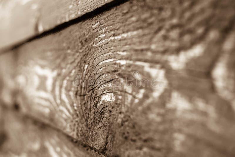 Macrofotografia del legno immagine stock libera da diritti
