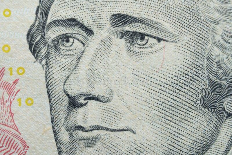 macroportret van Alexander Hamilton: Amerikaanse staatsman en één van de Grondleggers van de Verenigde Staten op dollar $10 bankn stock foto's