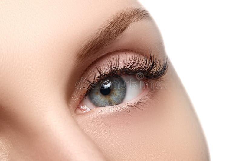 Macroschot van het mooie oog van de vrouw met uiterst lange wimpers Sexy mening, sensuele blik Vrouwelijk oog met lange wimpers stock afbeeldingen