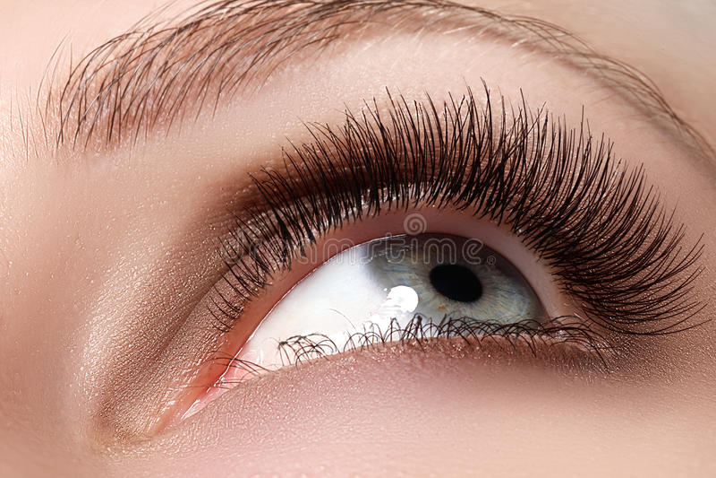 Macroschot van vrouwen mooi oog met uiterst lange wimpers stock fotografie